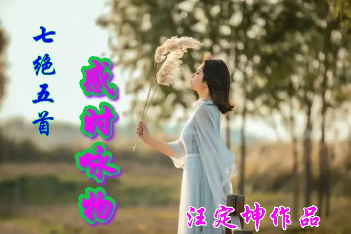 美图文字秀秀20191130094025.png