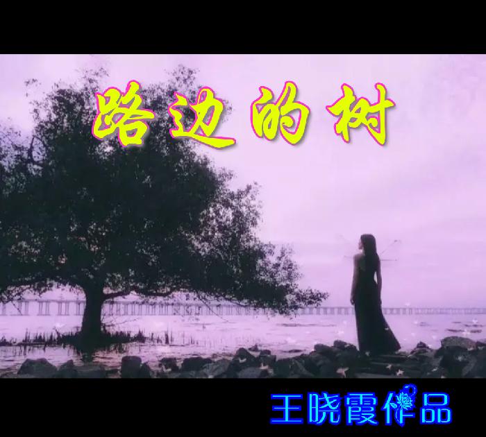 美图文字秀秀20191105224006.png
