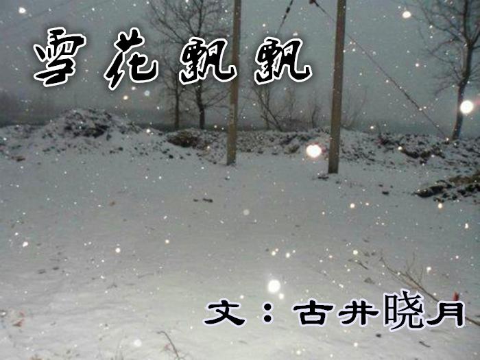 【长城网站~守城方阵】雪花飘飘