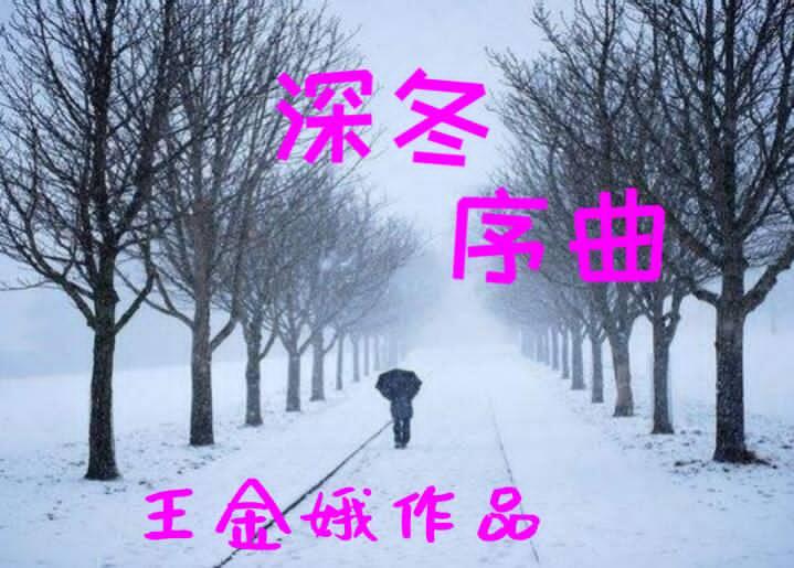 【听泉书苑】《深冬序曲》文/王金娥