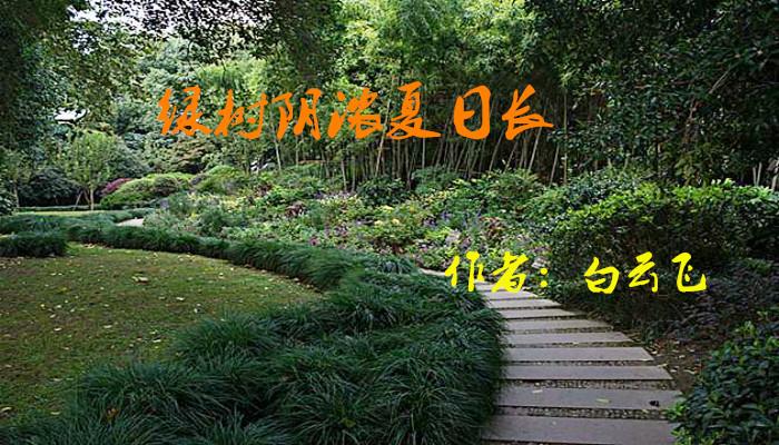 绿树阴浓夏日长