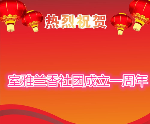 【室雅兰香】祝贺室雅兰香社团成立一周年