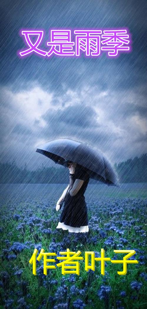 【室雅兰香】又是雨季(散文)