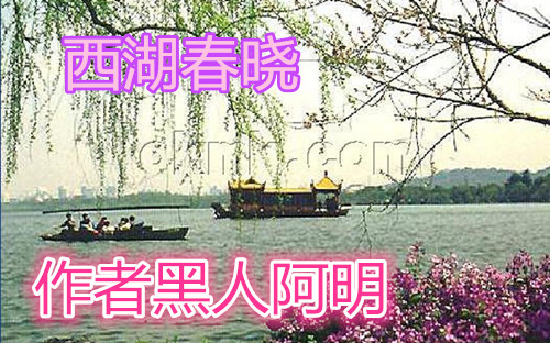 【室雅兰香】西湖春晓(随笔)